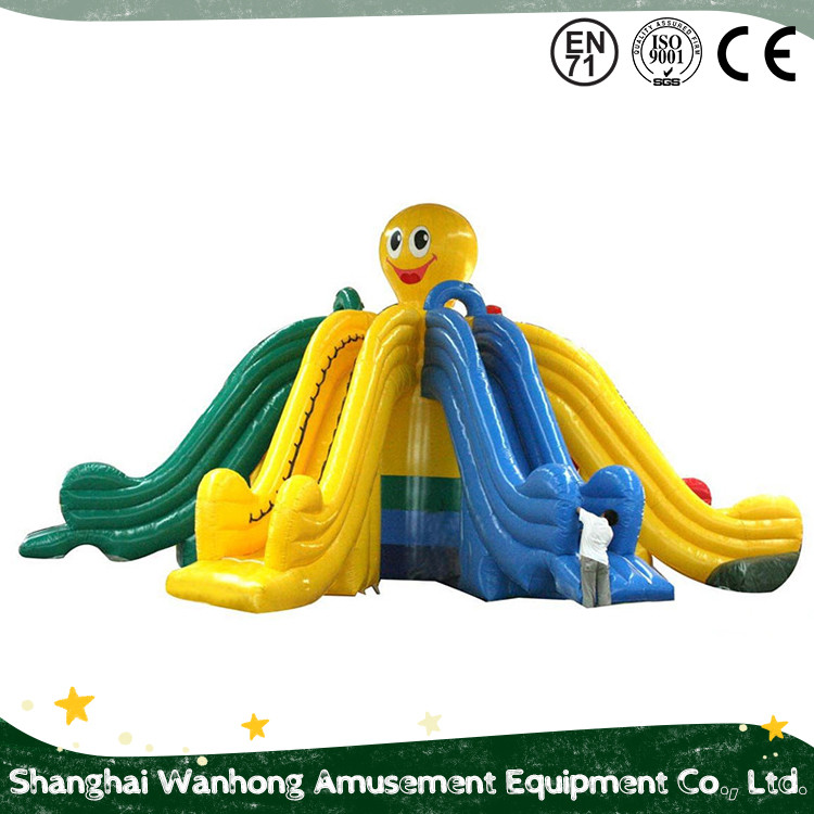 Factory Manufacture Various Inflatable Water Slides Prices/Slides Inflatable