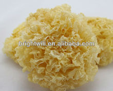 Dried White Fungus/ Snow Fungus, Yiner/Xueer, Edible Fungus