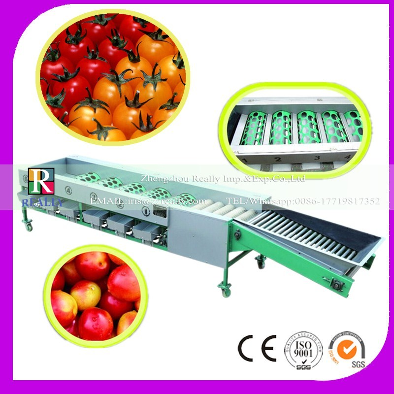 Stainless Steel Automatic tomato sorting machine/vegetable sorting machine/fruit sorting machine