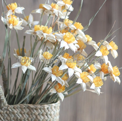 Narcissus The daffodils Dried flower handicrafts