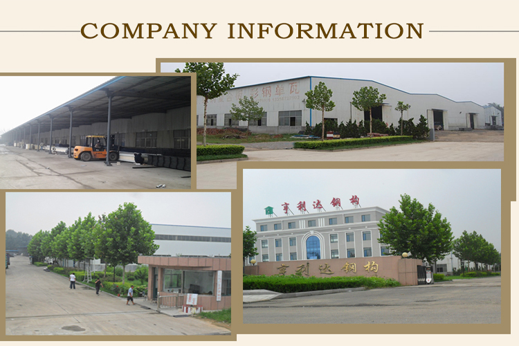 ISO9001 SGS High production efficiency steel structure poultry house