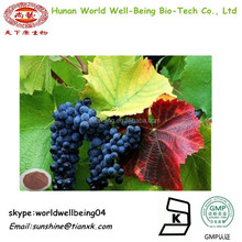 price of grape seed extract /grape skin powder / grape leaf extract