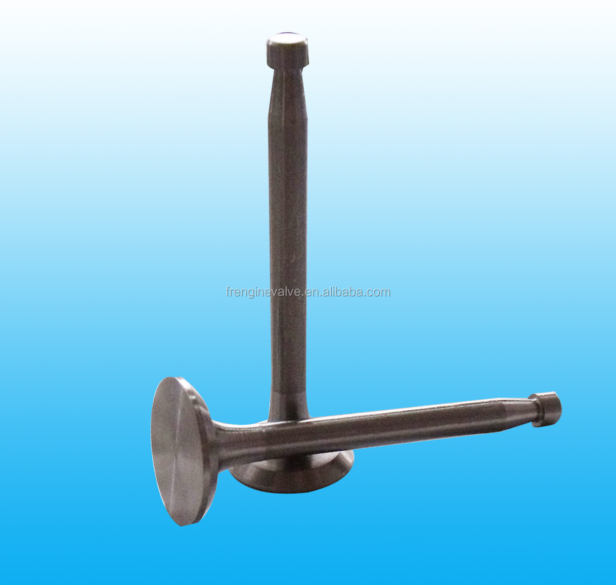 Best Selling! Types of Automobile Engine Valves