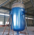 supply ASME standard stainless steel mixing reactor for chemical