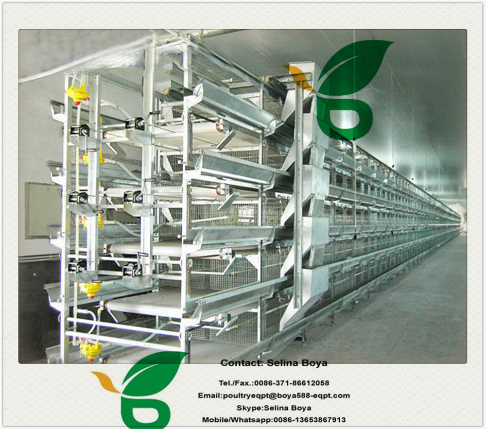 H Type Chicken Broiler Cage System