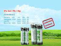 r03 carbon zinc aaa dry cell battery
