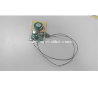 Plush Toy Music Recordable Chip/Box Sound Box Voice Module