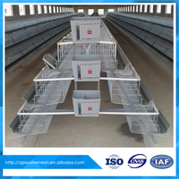 design layer chicken cage for poultry farm
