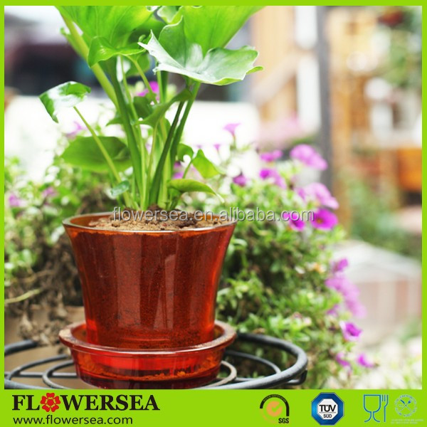 Flowersea wholesale home and garden small decorative orchid glass flower pot