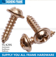 tsk295 screws flange head brass Philips head screw golden Philips head screw 3x12mm 3x10mm 3x8mm