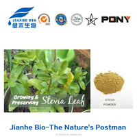 NSF-GMP Supplier provide health products Stevia Leaf Extract powder
