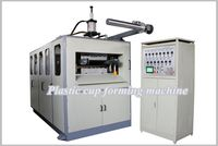 Cup/Bowl/Dish/Container/Tray/Box/Lid/Cover/Plate Plastic Making Machine