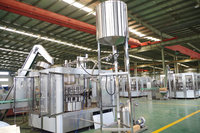 3in1 automatic glass bottle juice bottling plant
