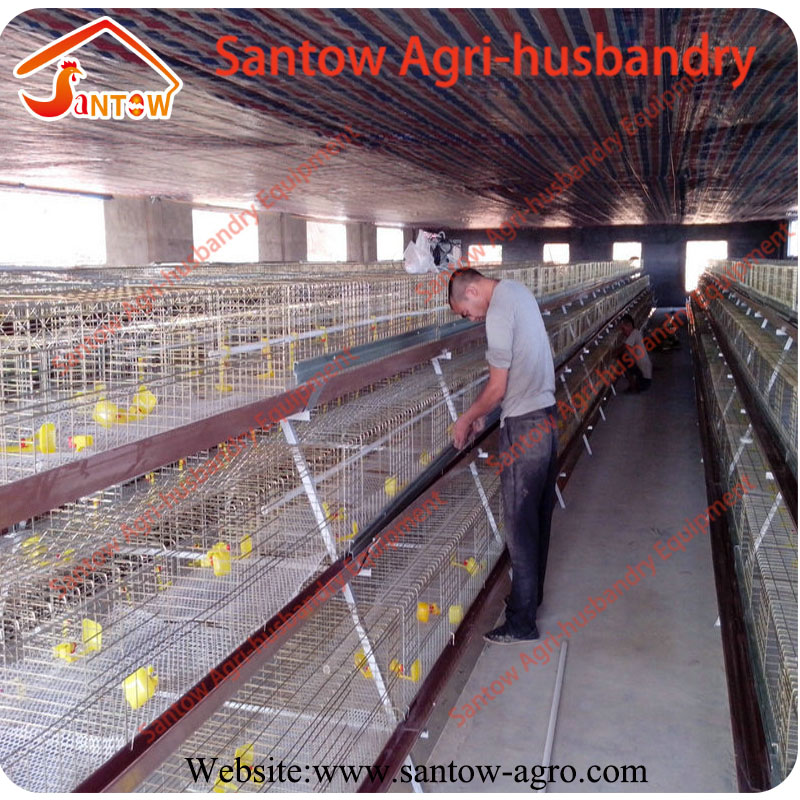 Full galvanized chicken layer cage high quality cheap price rooster cage for sale