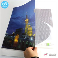 Guangzhou wholesale custom a4 size folder L shape plastic file folder