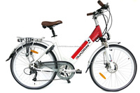 28 Inch Wheel TUV 250W Electric Bicycle (TDF11Z)