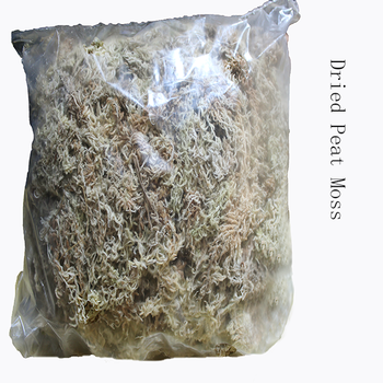 Garden Supplies Cheap Sphagnum Moss For Planting Orchid