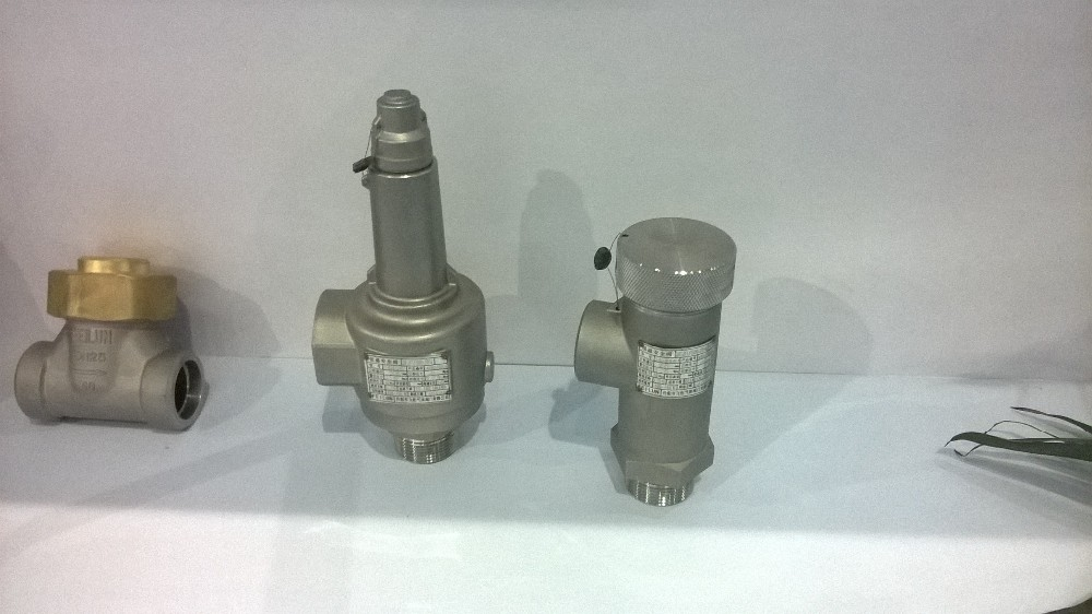 DA-25A SS304 cryogenic safety valve for liquid gas tank,low temperature gas pressure release valve for tank