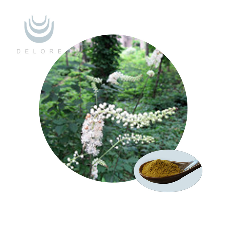 natural pure high quality Black Cohosh Extract