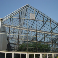 full automation performance Large Multi-Span Glass Greenhouse Project with complete solution for ecology mushroom cultivation