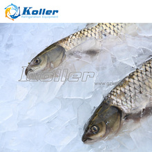 Koller 3tons/day Ice Plate Machine for Fish/seafood/meat 1 ton to 20 tons