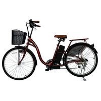 China Cheap Chopper Motorized Electric Bicycle