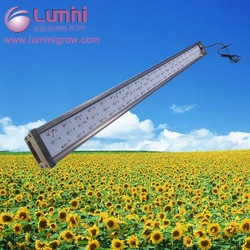 New dimming led lamp 600w 4 channel dimmable full spectrum uv panel led grow light growing vegetables indoors