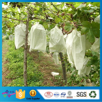 OEM Breathable Grape Bag Disposable ShoPPing Bag Nonwoven Fruit Protection Bag