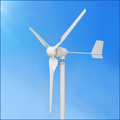 home wind energy 1kw 24v economical wind generator for resident