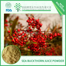 high quality Natural fruit powder Sea buckthorn fruit powder 25% Seabuckthorn extract beverage powder