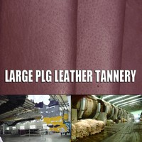laminated pig grain skin with fabric wet blue pig skins for fluffy ball Shoe Counter Lining Leather