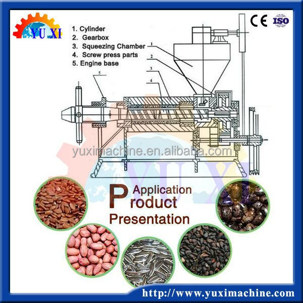 factory price home use cold screw oil press machine/multifunctional oil press