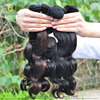Thick Bottom!! 6A 7A 8A 100% Human Wholesale peruvian hair weaves pictures