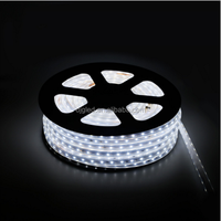 silicone waterproof flexible led strip
