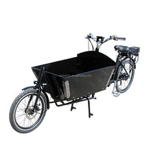 Classical 2 Wheel Brushless Electric Powered Cargo Bicycle For Sale