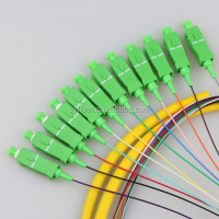 12 Cores G652D Fiber Optical SC APC Jumper and Pigtail for FTTH