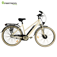 700C High Power Speed Electric Bike with Middle Motor 48V