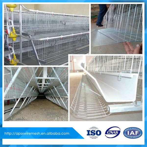 Best selling layer egg chicken cage for poultry farm house design
