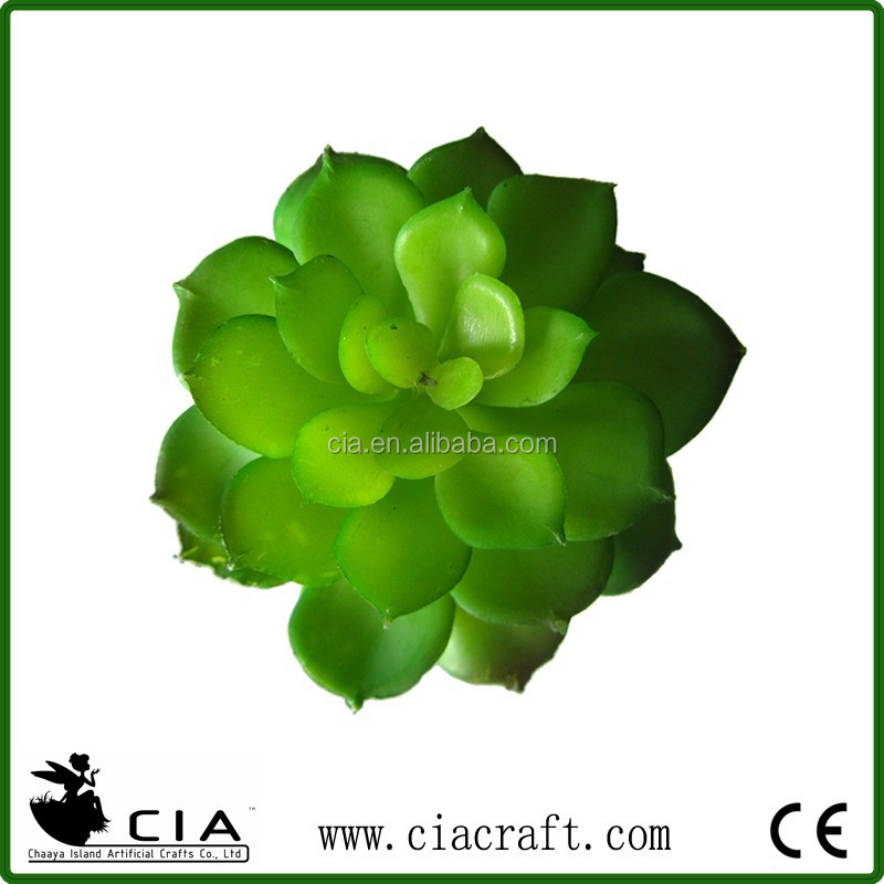 Factory Direct Mini Succulent Aeonium Stem in Deep Green