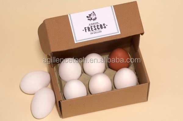 Custom disposable paper pulp 6 eggs egg tray carton buy for How to make paper egg trays