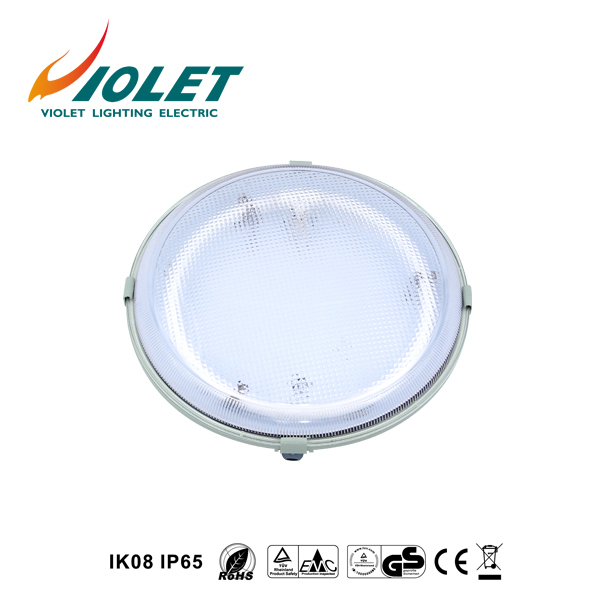 China Factory Supply LED Circular Fluorescent LightsFrom VIOLET