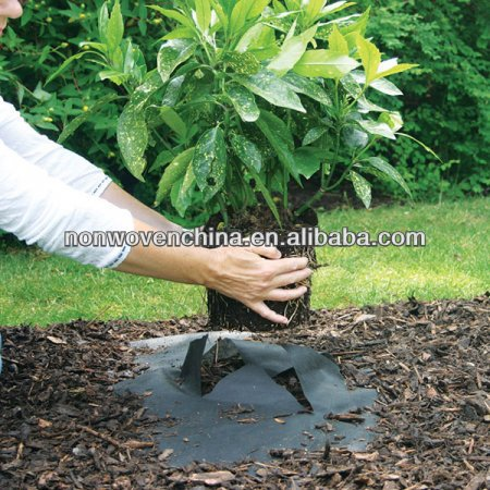 hotsale Cheap PP Woven Weed Control/Landscape/Ground Cover Fabric