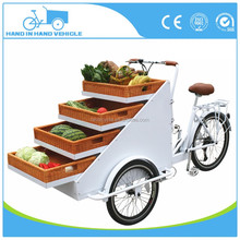 dynamo basket pedal cart van cargo trike with CE certification Philippines factory manufacturer