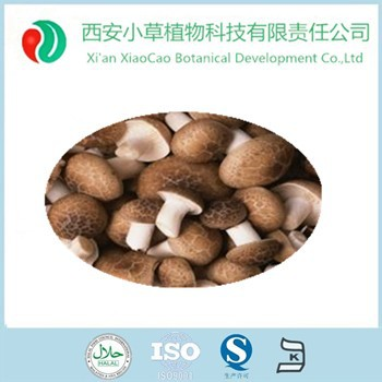 Manufacturer Supply Pure Natural Shiitake mushroom Extract powder/oyster mushroom powder
