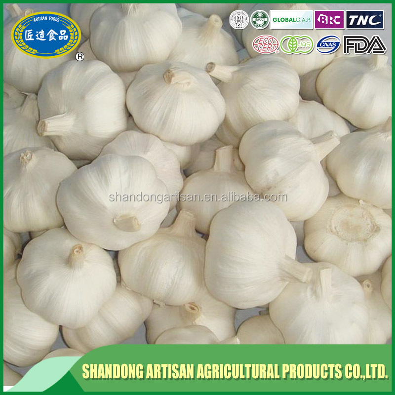 2017 new top grade bulk pack fresh garlic good quality with best price