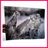 Plastic PP Pet Lens Placemat Card