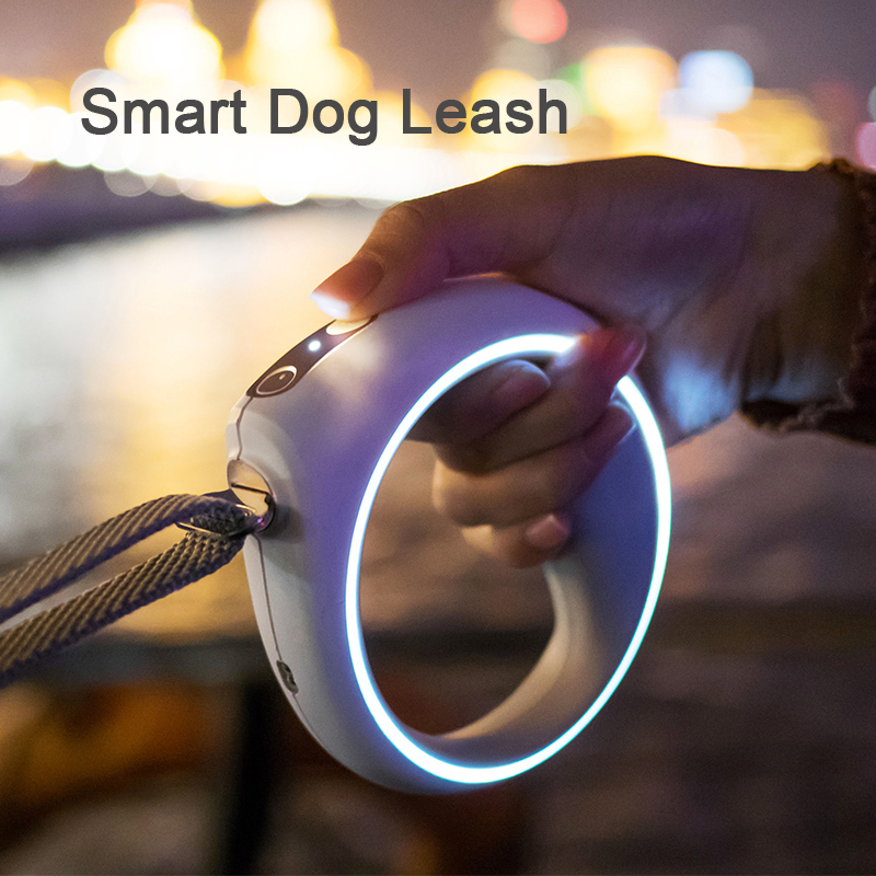 Intelligent pet accessory PETKIT P2 smart dog activity tracker with health and mood index analysis