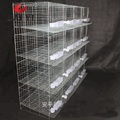 Trade Assurance 2m 3 Tier or 4 Tier Metal Pigeon Breeding Cages Wholesale