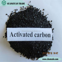 Bio Filter Media Coconut Shell Activated Carbon for Bio Filter