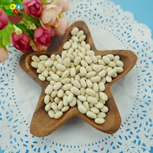 Chinese price of white kidney bean japanese type small-medium size
